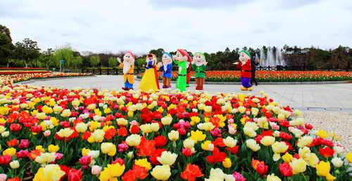 花朵出绽卡通风景图片