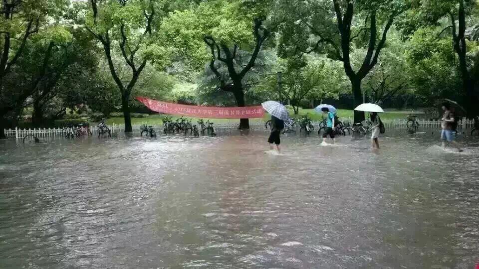 杨浦区邯郸路复旦大学校园内.