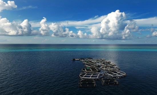 美济礁深海养殖基地