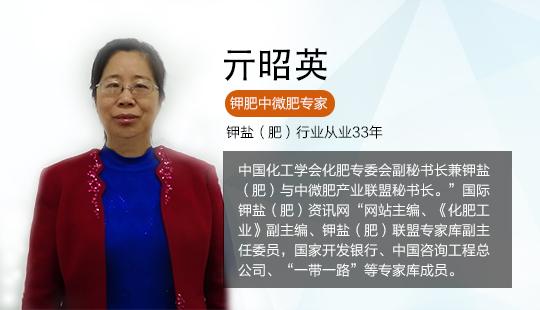亓昭英:中国化工学会化肥专委会副秘书长