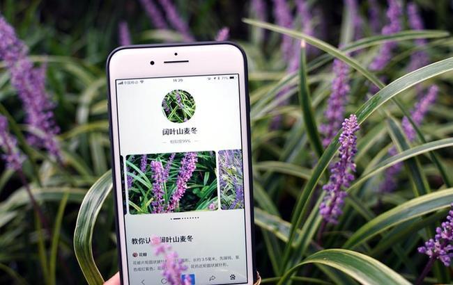 """上海植物园里体验""""拍照识花"""""""