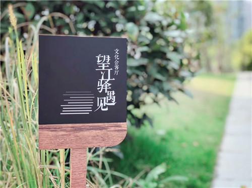 全年300+场网络直播望江驿・遇见全媒体文化会客厅正式上线