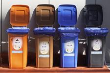 公共区域垃圾桶少了一半