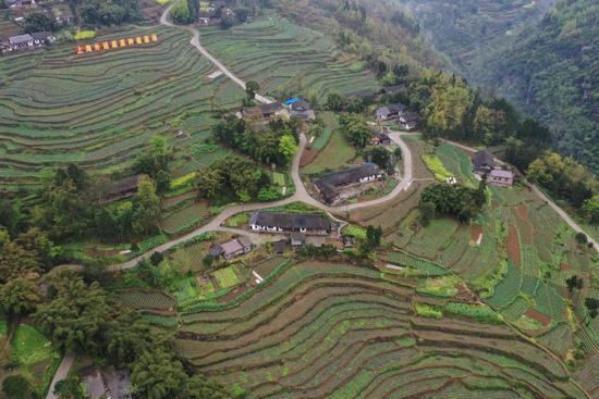 上海助力98个县脱贫背后:底色鲜明,就不惧山高路远